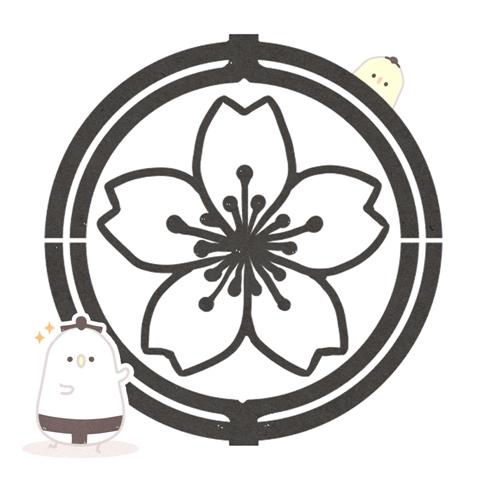 【相撲用語】相撲協会(すもうきょうかい)の意味とは